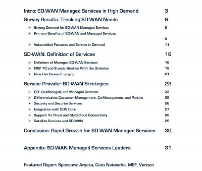 Futuriom SD WAN MS 2019 v3 6 final excerpt TOC